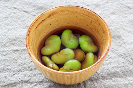 soaked: Boiled and soaked broad beans