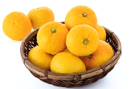 a colander: Many Yuzu fruits in the colander Stock Photo