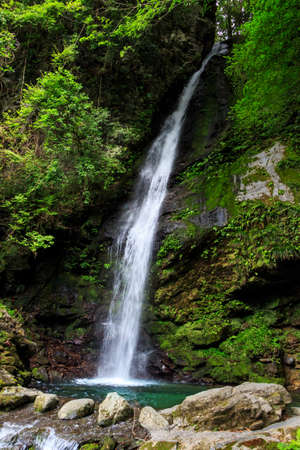 cataract falls: Biwa falls are located on next to Iya Kazurabashi Japan Stock Photo