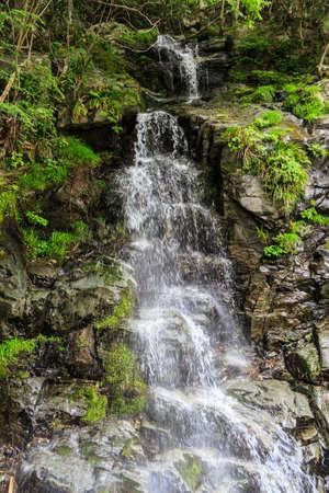 cataract falls: Niji taki is located on Okuiya Japan