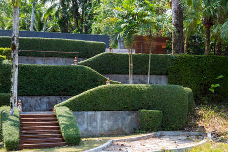 shrubbery: staircase and shrubbery, tree.