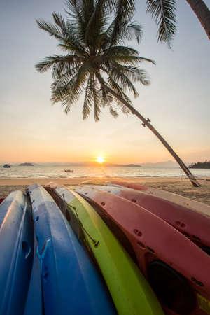 watersport: Watersport kayak under a palm tree on sand beach. Stock Photo