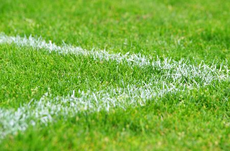 grass close up: Soccer Grass - Close-up view Stock Photo
