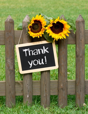 thank you: Thank you