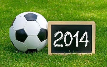 Soccer 2014 photo