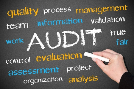 audit: AUDIT - Business Concept