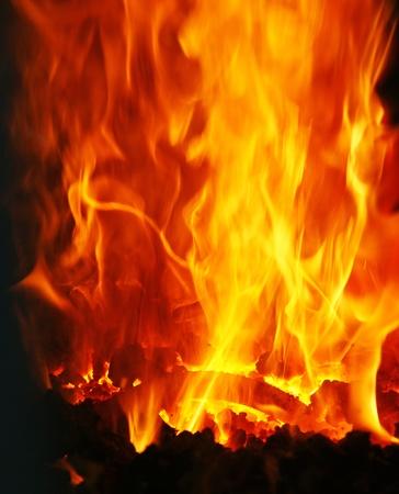 devour: The burning Fire Stock Photo