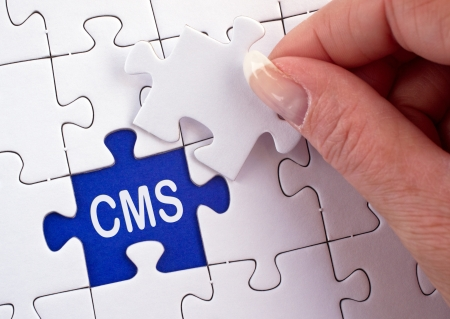 webmaster website: Content Management System Stock Photo