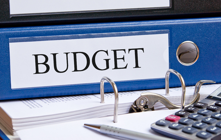 financial controller: Budget
