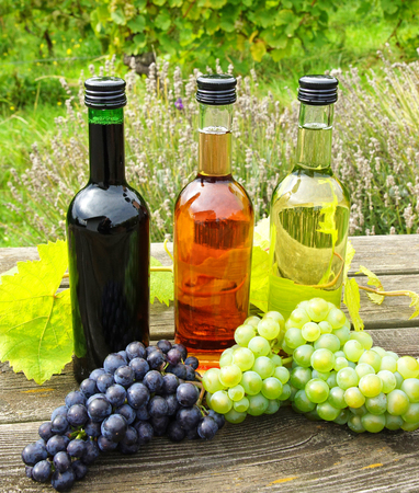 Wine bottles and wine grapes photo