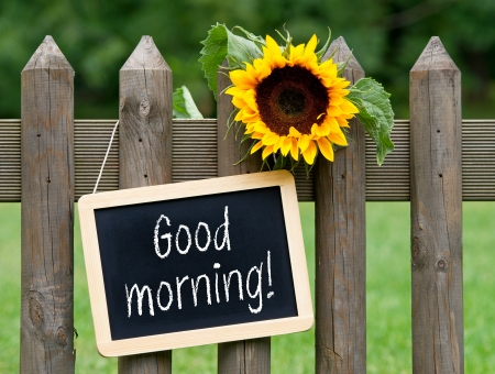 Good morning Stok Fotoğraf - 22836778