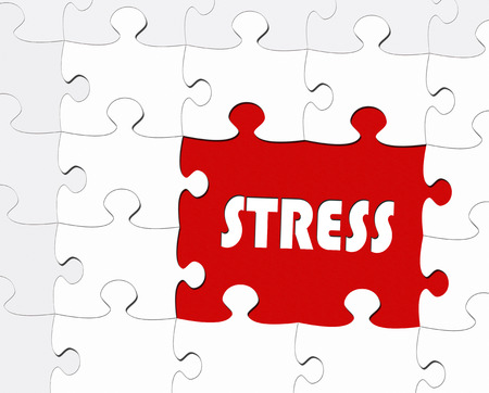 psyche: Stress