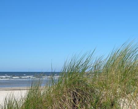 duna: Playa