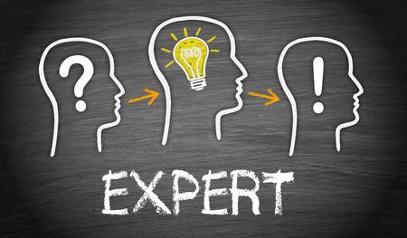 expert: Expert
