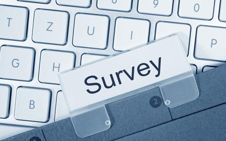 web survey: Survey