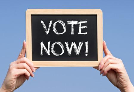 local government: Vote Now !