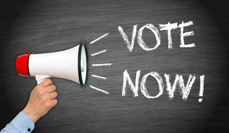 local election: Vote Now !