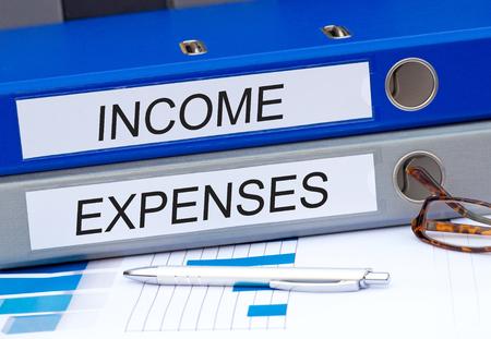ganancias: Ingresos y Gastos