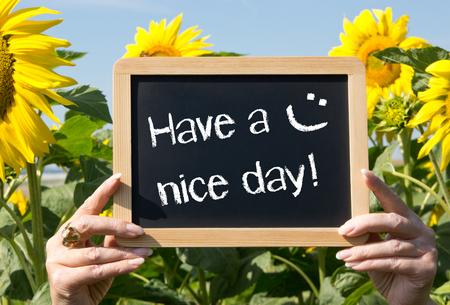 girasol: Que tengas un buen día ! Foto de archivo