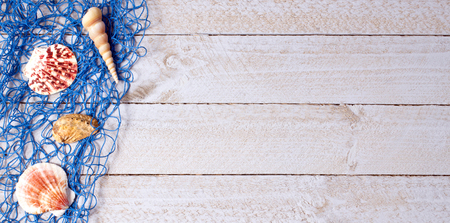 blue fish: Shells with blue fishing net on wooden background