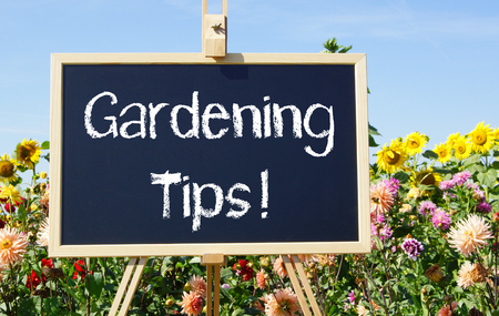 Gardening Tips - chalkboard with flowers in the garden Stock Photo