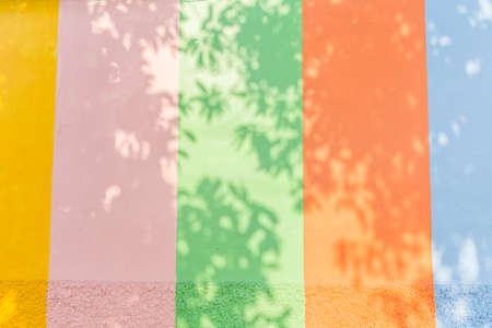 tree shadow: Tree shadow in colourful background Stock Photo