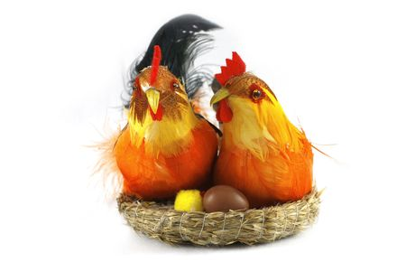 Easter happy, colorful chickens in love on white Stock Photo