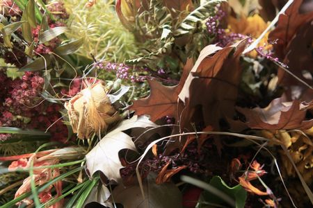 Colourful bouquet of dry flowers, chestnuts, acorns and rowan