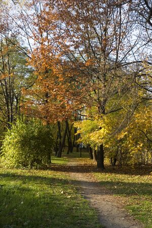 Colorful, autumn path in the park during sunny day Stock Photo