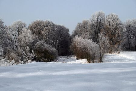 Snowy, frosty winter somewhere outside the city