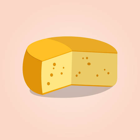 cheese: Wheel of cheese. Vector illustration