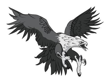 Vector Bald Eagle or Hawk Head Mascot Graphic Illustration