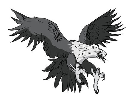 prey: Vector Bald Eagle or Hawk Head Mascot Graphic Illustration