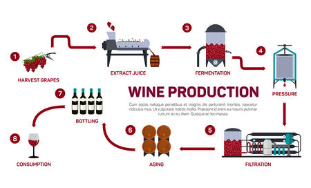 Vector illustration of wine making. How wine is made, wine elements, creating a wine, winemaker tool set and vineyard, flat infographic. Production of alcoholic beverages.