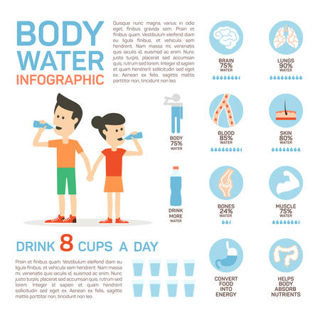 Vector flat style of body water infographic concept. Concept of drinking water, healthy lifestyle. Bottle brain body lungs bones blood skin muscle stomach. Vectores