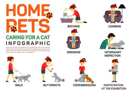 veterinaria: Vector ilustración infografía plana de cuidar sobre animales domésticos gato.