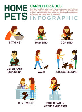 dog health: Vector flat illustration infographic of caring about pets dog.
