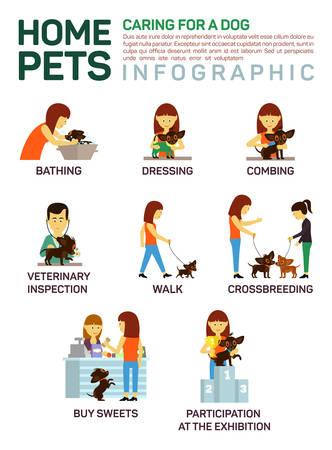 veterinaria: Vector ilustración infografía plana de cuidar sobre animales domésticos perro.