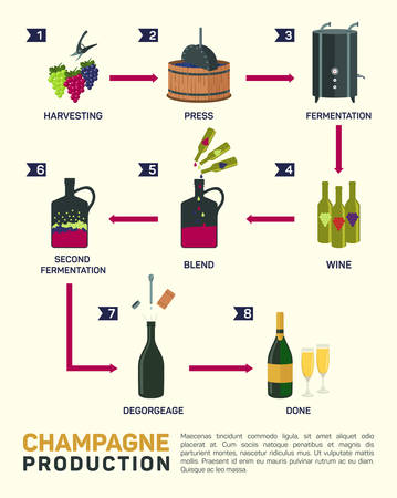 wine making: illustration of wine making. how wine is made, wine elements,  infographic Illustration