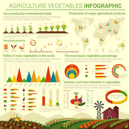 infocharts: Infographic or infocharts template or layout for agriculture vegetables and its distributing over world map. Graphs and bar and circle, conus and linear, pie charts over field that has cabbage