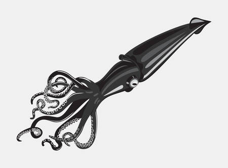 tentacle: Black squid or cuttlefish with swirl arms and suction cups on it. Spineless sea animal with feeding tentacle. Underwater mollusk and aquarium cephalopod. Can be used for tattoo or mascot emblem