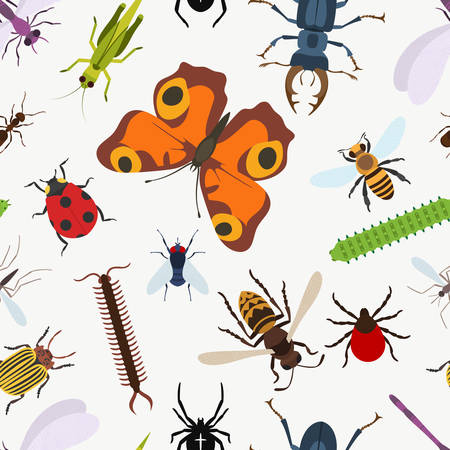Garden insects seamless pattern. lady beetle and dragonfly, Lucanus cervus and wasp or bee, coccinellidae or ladybug, araneus orb spider and grasshopper, larvae and stag beetle, moth and bumblebee Illustration