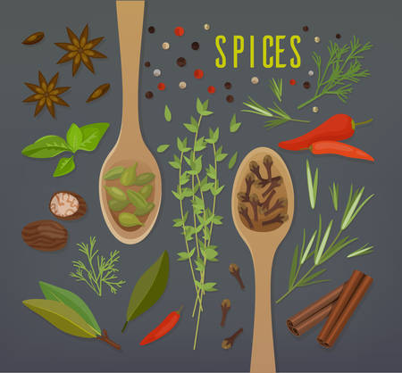 Spice herbal plants with spoons including cloves and cinnamon, white and black pepper, allspice and pimento, dill and basil, coriander and tarragon or estragon, nutmeg and mint, mustard and cardamom