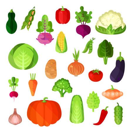 Gemüse Ernte im Sommer, veganische Kost Sammlung. Kartoffel und Chinakohl, Paprika annuum oder Glocke und Paprika, Blumenkohl und Gurken, Mais und Kürbis, Aubergine und Rettich, Zwiebeln und Patisson Vektorgrafik