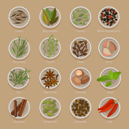 Spice or seasoning on plates like seeds, roots, leaf, herb for flavour and taste. Cumin and bay laurel or indian leaves, fennel, blend peppercorn, star anise and nutmeg, basil and cinnamon, cardamom