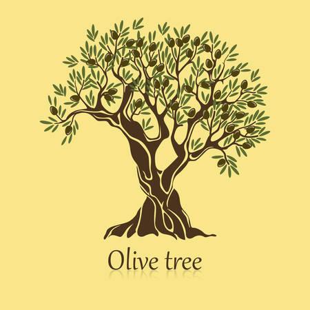 olivo con rami e bacche banner. olio viscoso distintivo pianta mediterranea. Buon per l'antica etichetta greca ed emblema striscio liquido, naturale vegetariana negozio segno