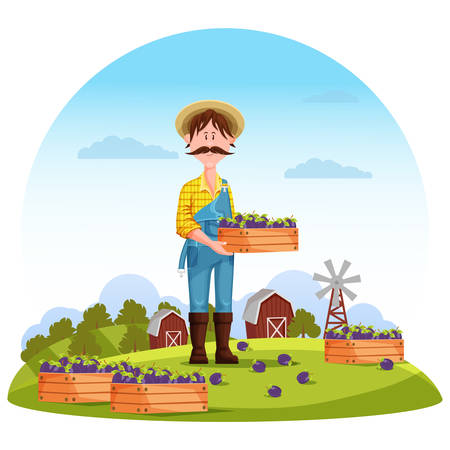 agrarian: Agriculture man on field, farmer harvester. Worker or gardener, farmer harvesting healthy plum on field in front of barn or granary, mill. Perfect for agrarian farmer or cultivation plants on field Illustration