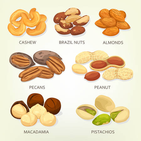 hickory nuts: Brazil nuts and cashew fruit seeds, grains