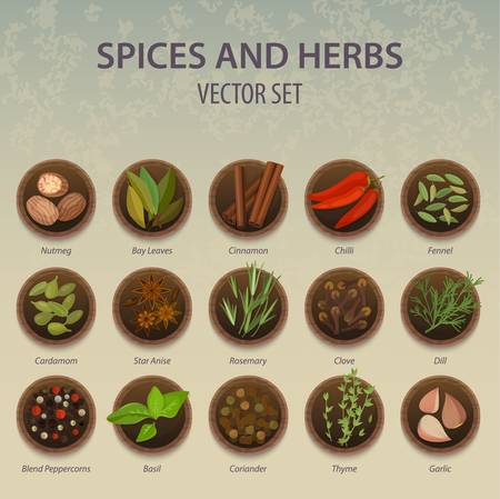 Plates with spice and herbs, seasoning ingredient Illustration