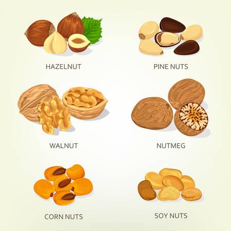 soy bean: Hazelnut and walnut, corn and soy nuts shell
